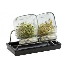 Set de 2 germoirs 750 ml en verre avec support inox et coupelle en céramique anthracite - Eschenfelder