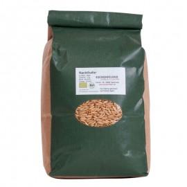 Avoine nue Graines à germer bio - 1 kg - Eschenfelder