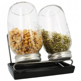 Germoirs en verre Eschenfelder 1500 ml système 2 coupelle anthracite