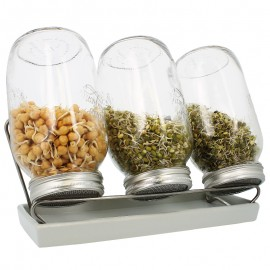 Germoirs en verre Eschenfelder 1500 ml système 3 coupelle blanche