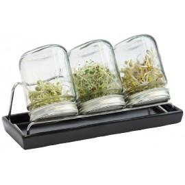 Set de 3 germoirs 750 ml en verre avec support inox et coupelle en céramique anthracite - Eschenfelder