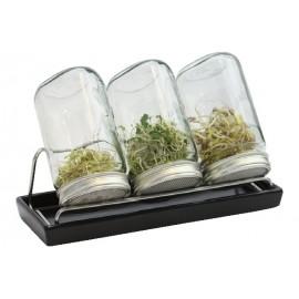 Set de 3 germoirs 1000 ml en verre avec support inox et coupelle en céramique anthracite - Eschenfelder