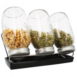 Germoirs en verre Eschenfelder 1500 ml système 3 coupelle anthracite