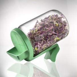 Germoir bocal en verre 400ml - Germline