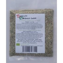 Fenouil, Graines à germer Bio - 150 g - Bardowick