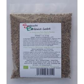 Rote Beete/Randen Bio Keimsamen - 150 g - Bardowick