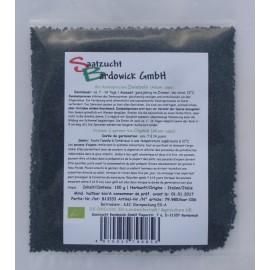 Zwiebeln Bio Sprossen-Keimsaat - 100 g - Bardowick